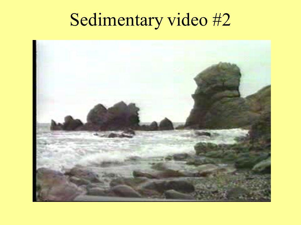Sedimentary video #2