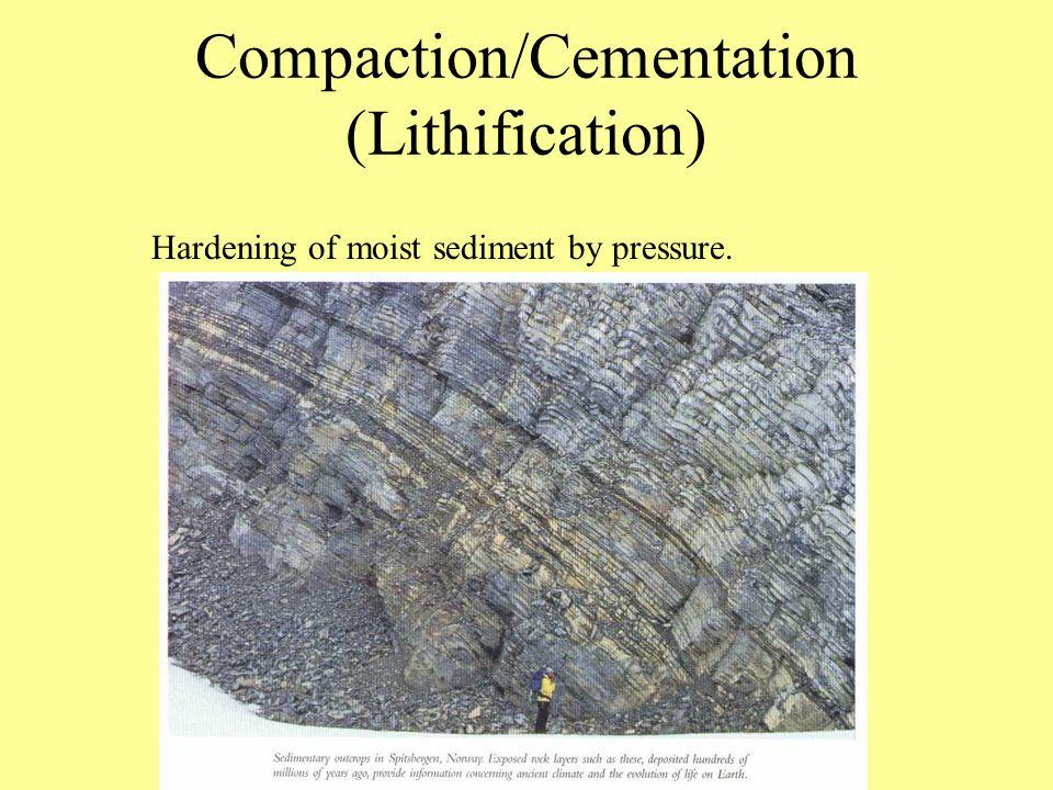 4-3 Sedimentary Rocks 75% of all Rocks on Earth's surface are sedimentary.