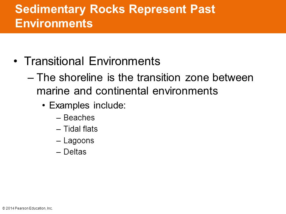 © 2014 Pearson Education, Inc. Transitional Environments –The shoreline is the transition zone between marine and continental environments Examples in