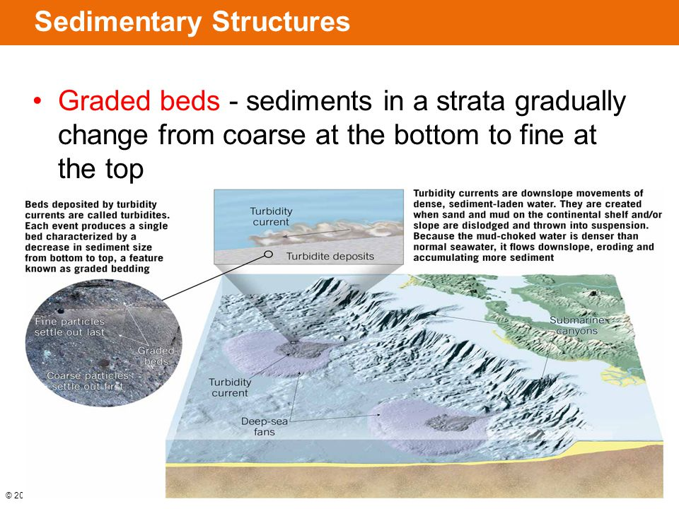 © 2014 Pearson Education, Inc. Sedimentary Structures Graded beds - sediments in a strata gradually change from coarse at the bottom to fine at the to