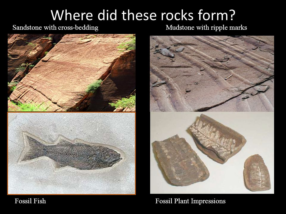 Types 2 major types: – A.Clastic: Made of smaller pieces of rocks called clasts.