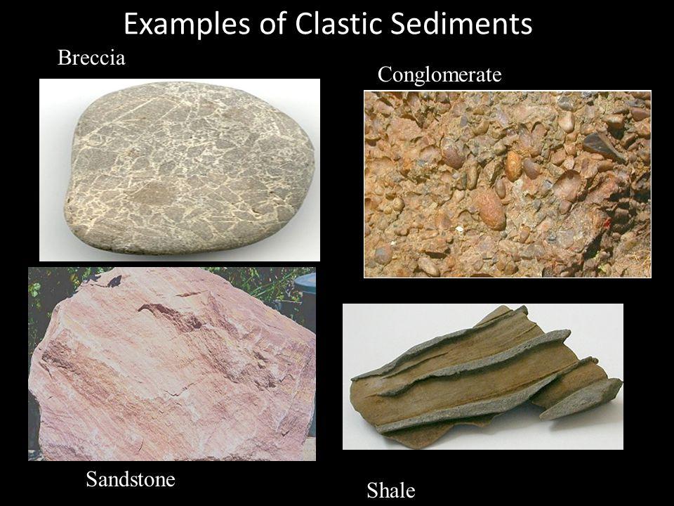 Examples of Clastic Sediments Breccia Conglomerate Sandstone Shale