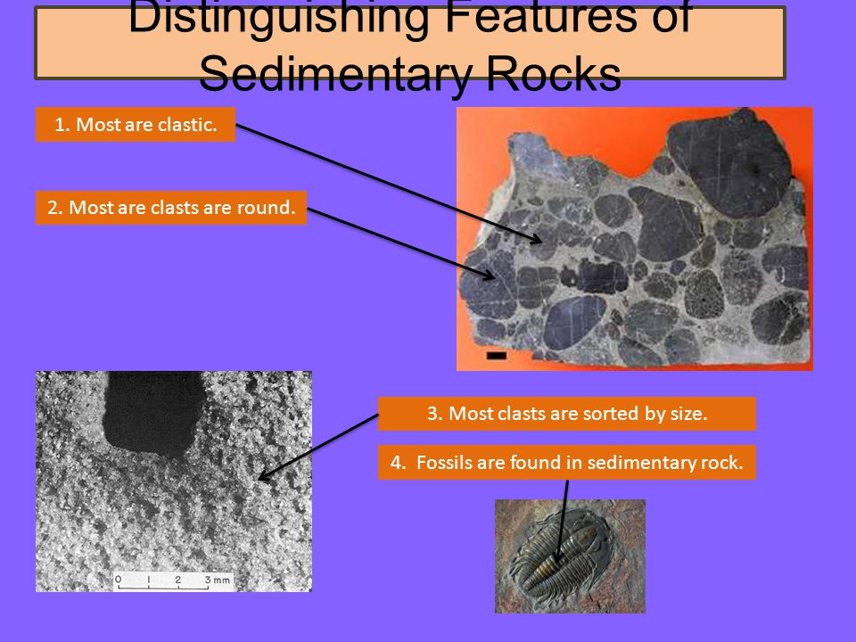 Distinguishing Features of Sedimentary Rocks 1. Most are clastic.