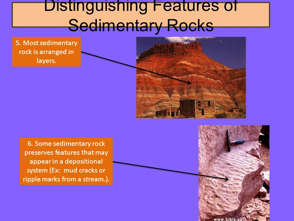 Distinguishing Features of Sedimentary Rocks 5. Most sedimentary rock is arranged in layers.