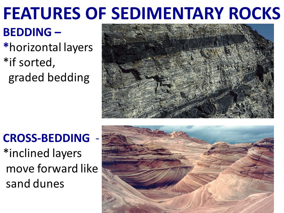 FEATURES OF SEDIMENTARY ROCKS BEDDING – *horizontal layers *if sorted, graded bedding CROSS-BEDDING - *inclined layers move forward like sand dunes