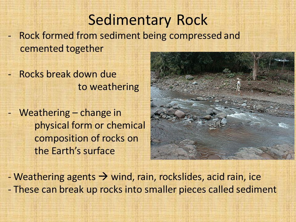 Sedimentary Rocks Earth and Space Science