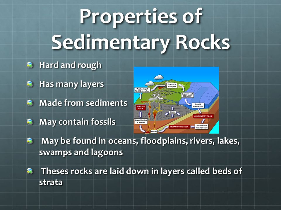 Properties of Sedimentary Rocks Hard and rough Has many layers Made from sediments May contain fossils May be found in oceans, floodplains, rivers, lakes, swamps and lagoons May be found in oceans, floodplains, rivers, lakes, swamps and lagoons Theses rocks are laid down in layers called beds of strata Theses rocks are laid down in layers called beds of strata