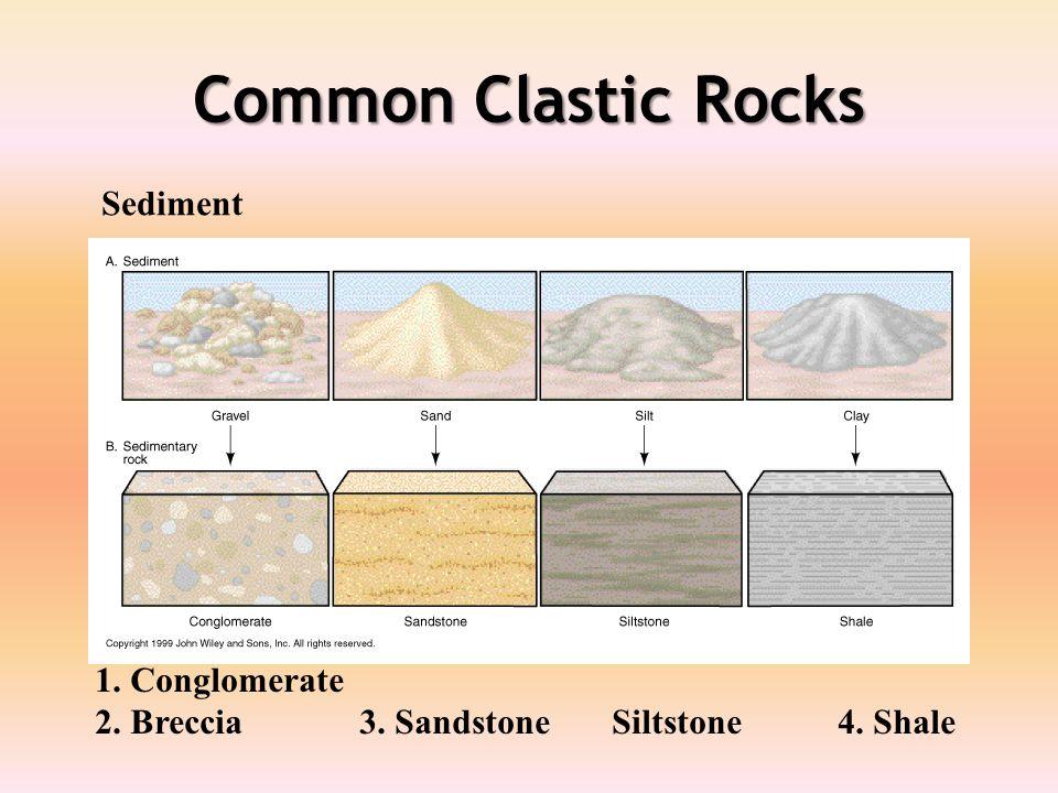 Common Clastic Rocks 1. Conglomerate 2. Breccia 3. Sandstone Siltstone 4. Shale Sediment