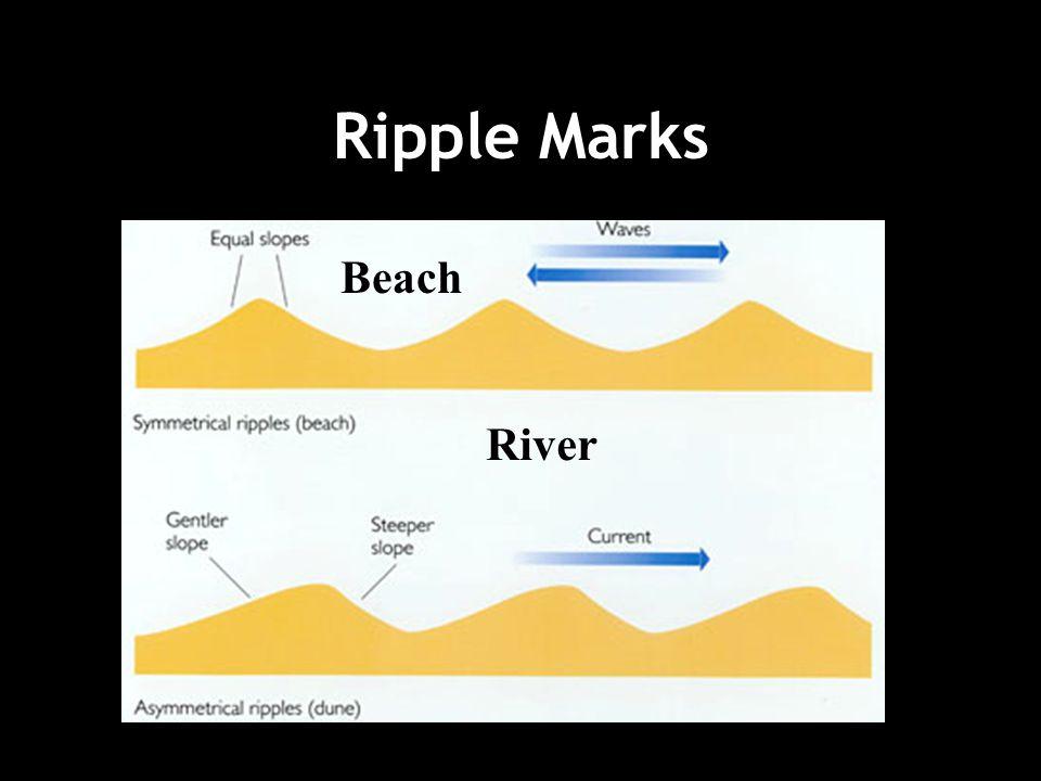 Ripple Marks Beach River