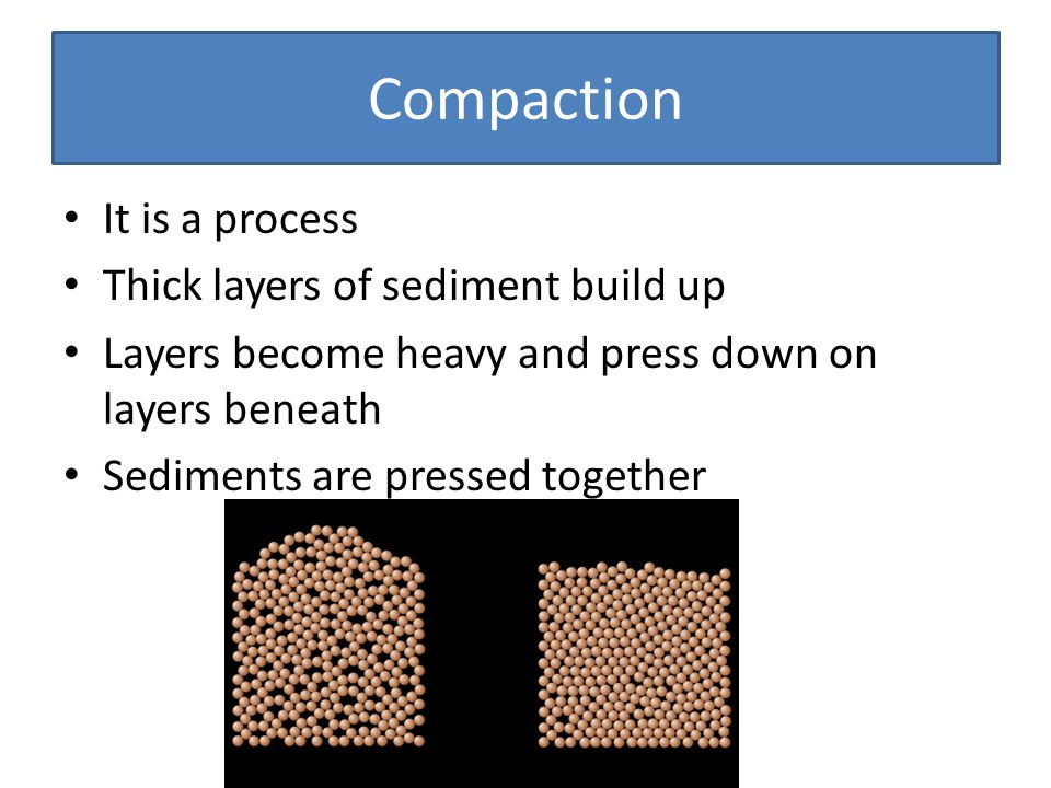 Compaction It is a process Thick layers of sediment build up Layers become heavy and press down on layers beneath Sediments are pressed together