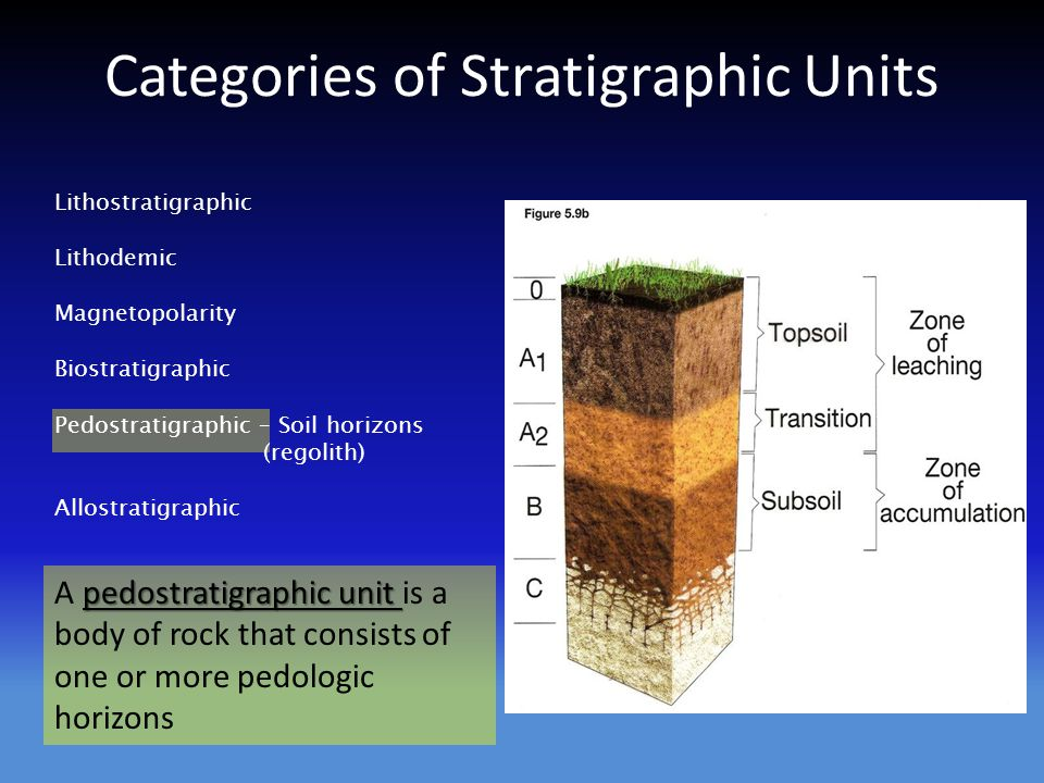Lithostratigraphic Lithodemic Magnetopolarity Biostratigraphic Pedostratigraphic – Soil horizons (regolith) Allostratigraphic pedostratigraphic unit A pedostratigraphic unit is a body of rock that consists of one or more pedologic horizons Categories of Stratigraphic Units