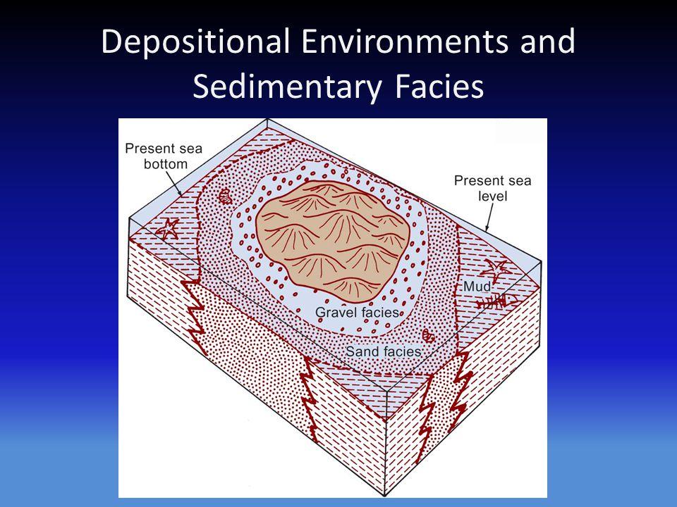 Depositional Environments and Sedimentary Facies