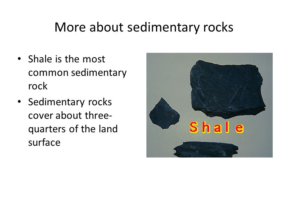 Biologic sedimentary rocks come from the remains of organic matter.