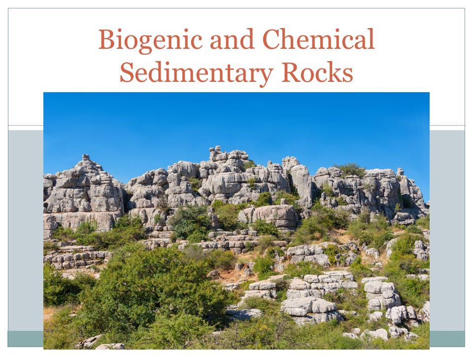 UNIT 3 Biogenic and Chemical Sedimentary Rocks