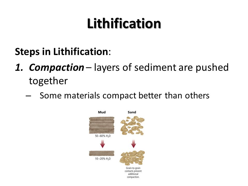 Lithification Steps in Lithification: 1.Compaction – layers of sediment are pushed together – Some materials compact better than others