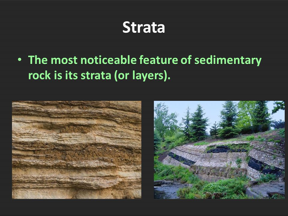 Strata The most noticeable feature of sedimentary rock is its strata (or layers).