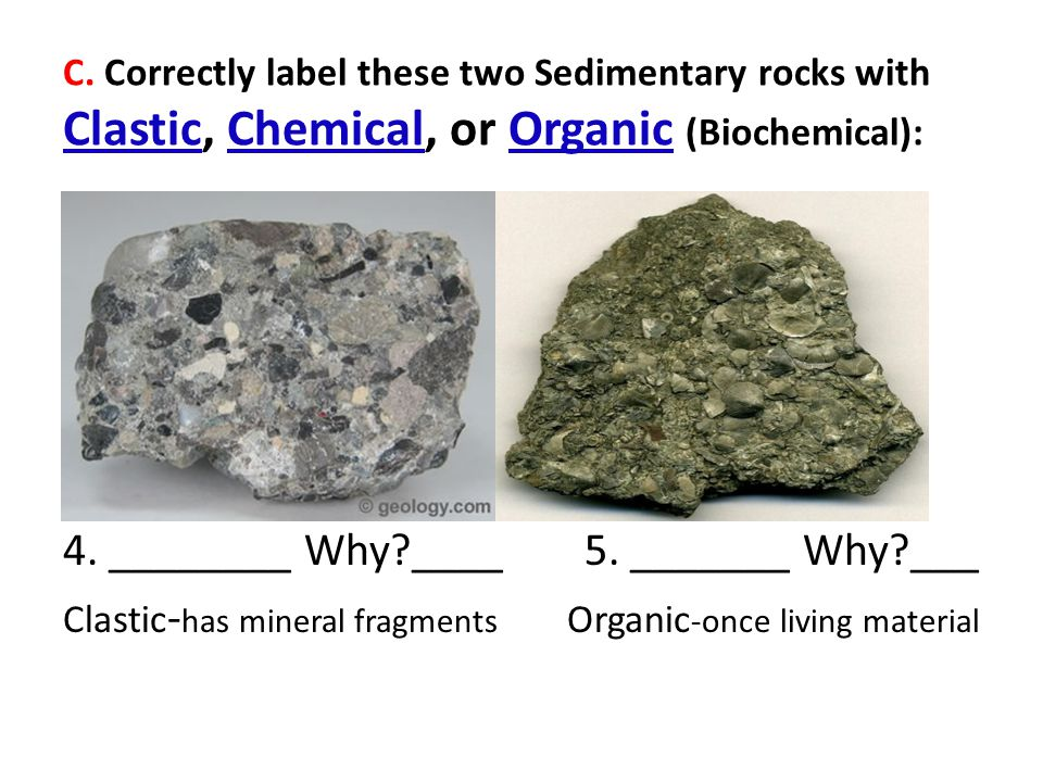 C. Correctly label these two Sedimentary rocks with Clastic, Chemical, or Organic (Biochemical): 4. ________ Why?____5. _______ Why?___ Clastic - has