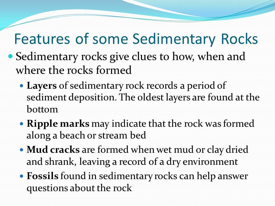 Ripple marks Fossils Layers of sedimentary rock Mud cracks