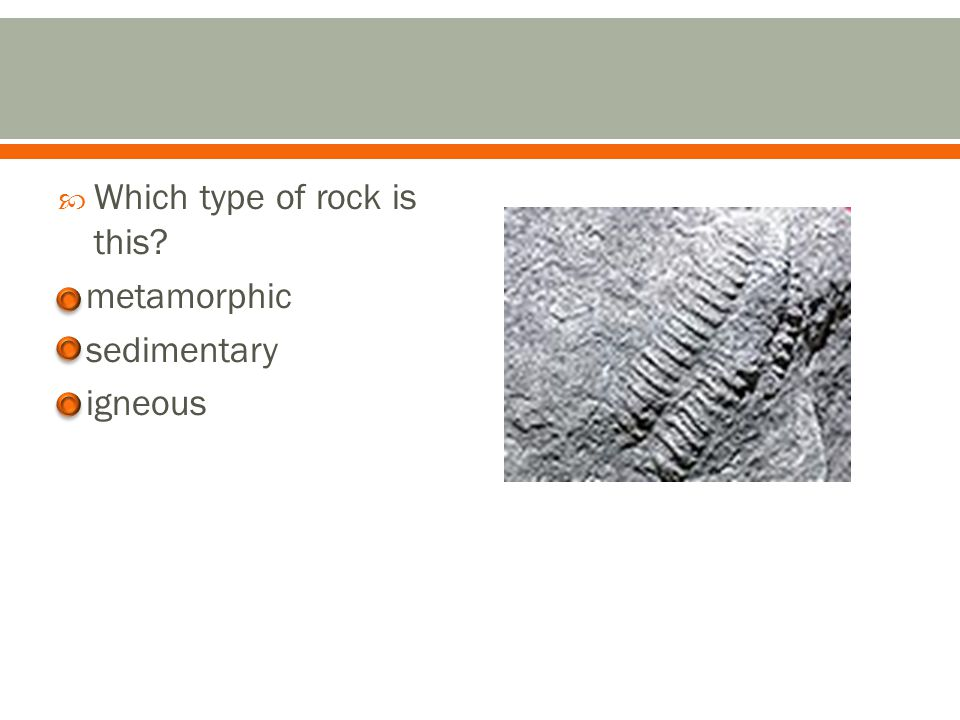 Correct! You can tell that this rock is metamorphic because of the rippled layers.