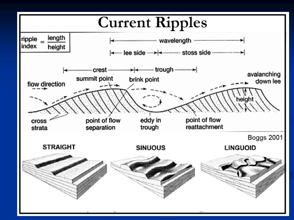 Assymetric flow ripples from Vermillon River (Asimetrik akıntı ripple'ları. Vermillon Nehri.)