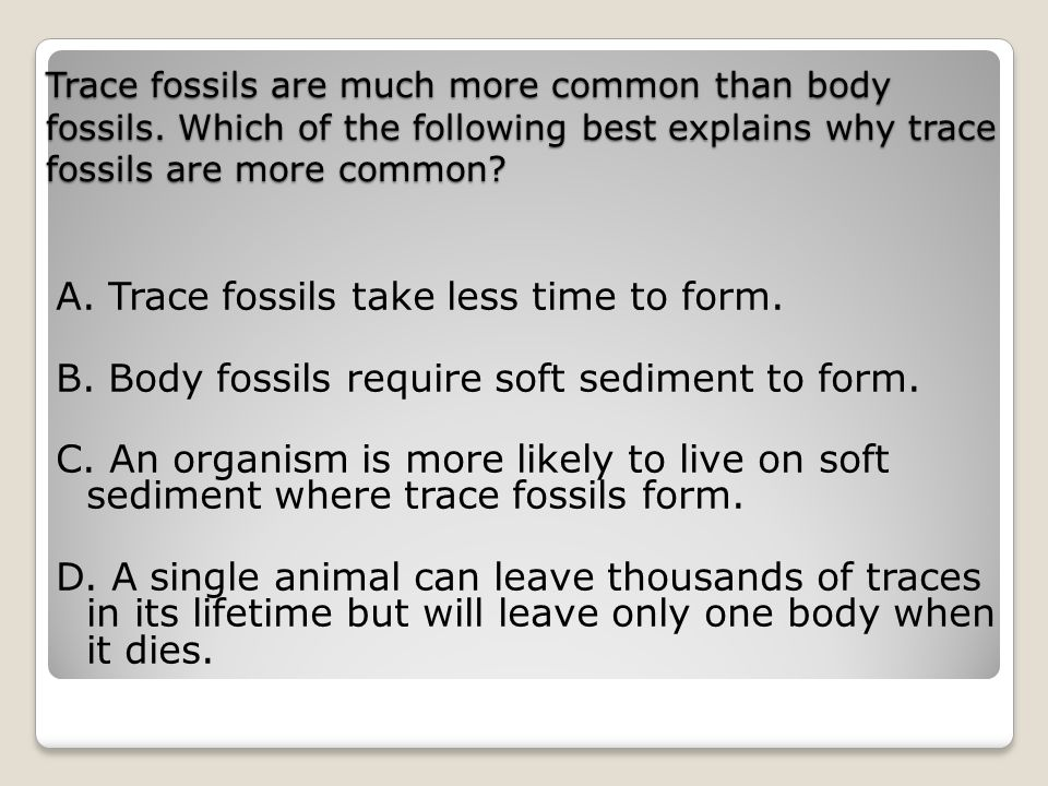 Trace fossils are much more common than body fossils.
