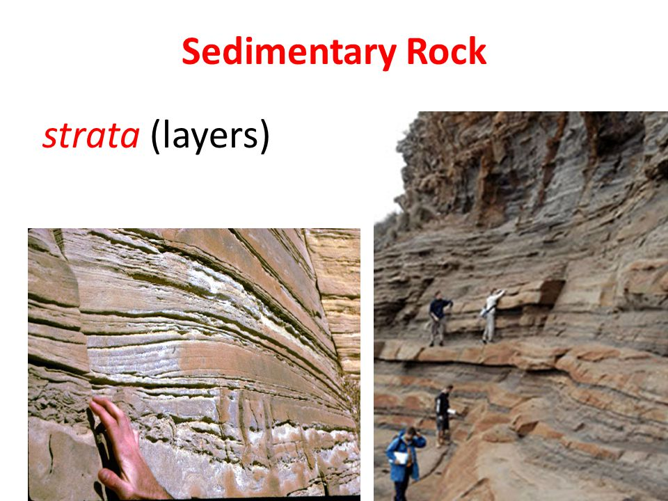 Sediment Deposited in low areas Largest grains sink to the bottom and the smallest grains at the top resulting in layers As more sediment is deposited the bottom layers are subject to increasing pressure & temperature causing Lithification