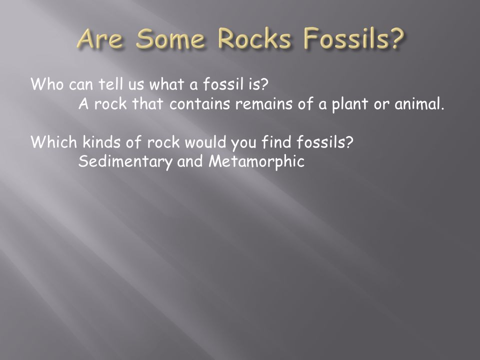 Who can tell us what a fossil is. A rock that contains remains of a plant or animal.