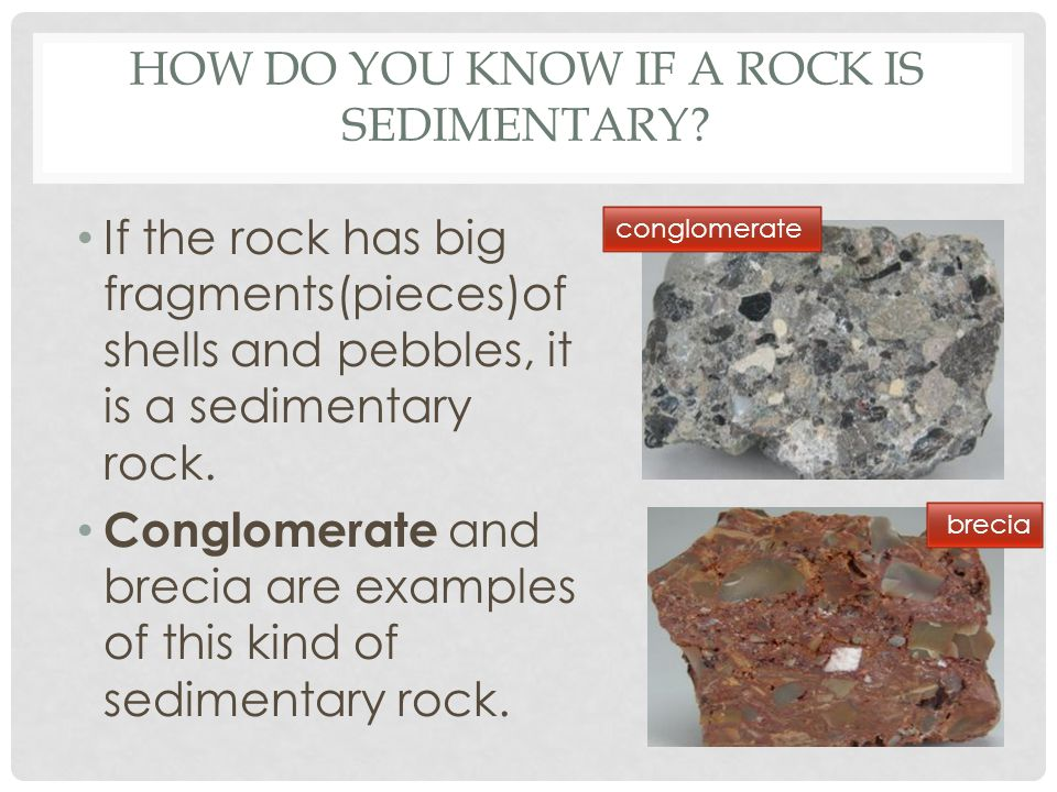 HOW DO YOU KNOW IF A ROCK IS SEDIMENTARY? If the rock has big fragments(pieces)of shells and pebbles, it is a sedimentary rock. Conglomerate and breci