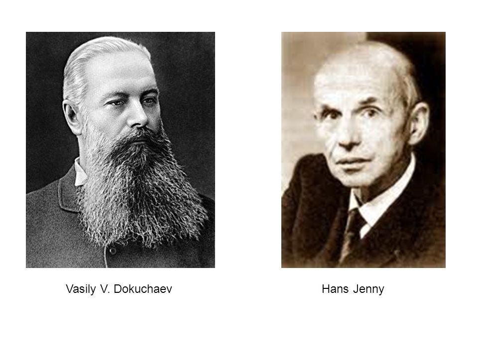 Vasily V. Dokuchaev Hans Jenny
