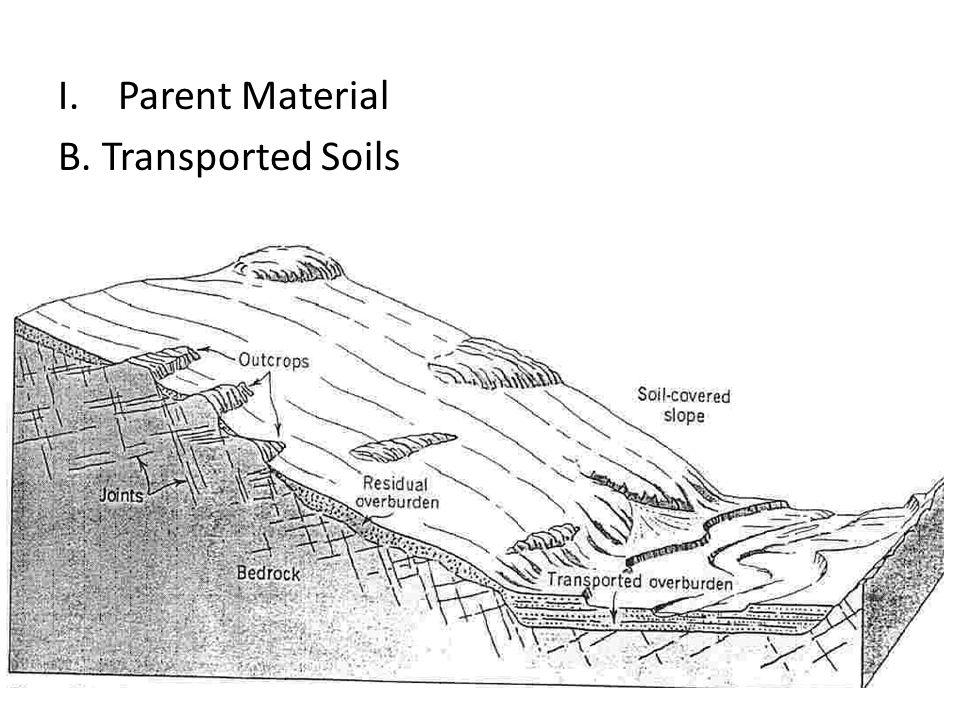 I.Parent Material B. Transported Soils R