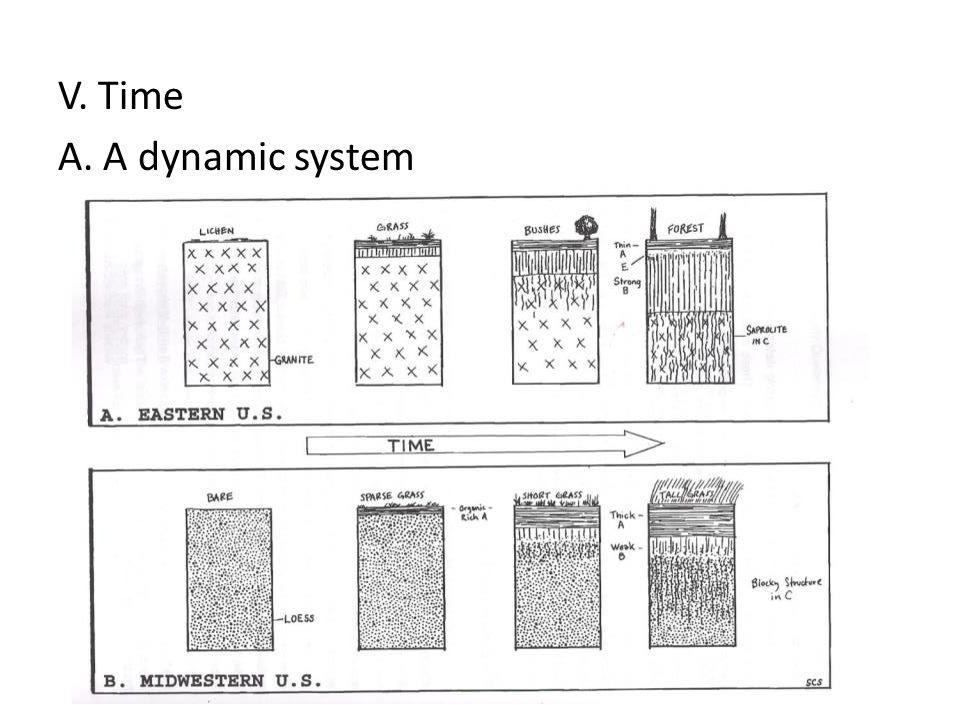 V. Time A. A dynamic system