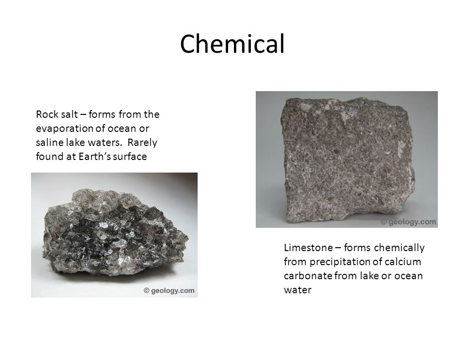 Organic Coal – Forms from Plant Debris – Often found in Swamp areas