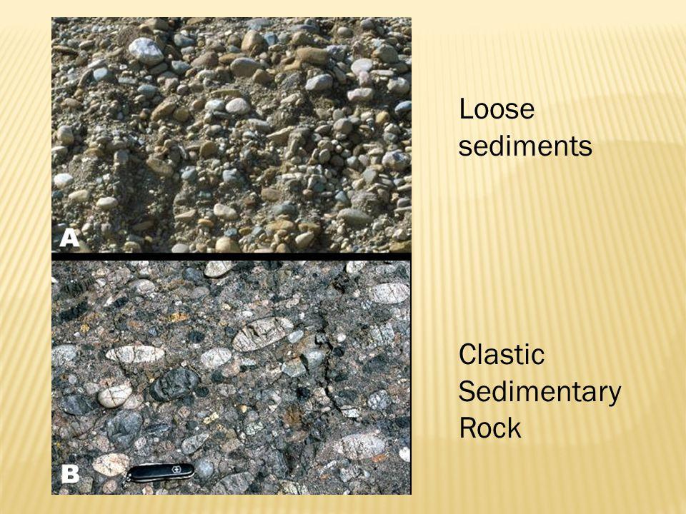 Loose sediments Clastic Sedimentary Rock