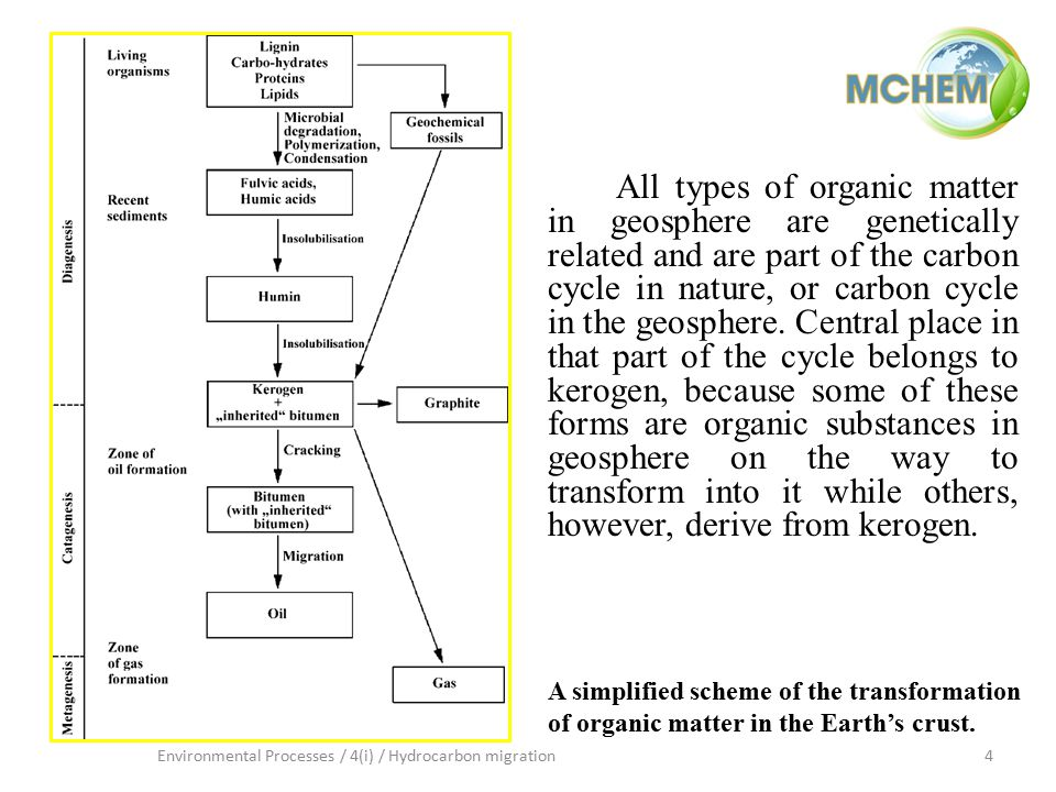 4Environmental Processes / 4(i) / Hydrocarbon migration A simplified scheme of the transformation of organic matter in the Earth's crust. All types of