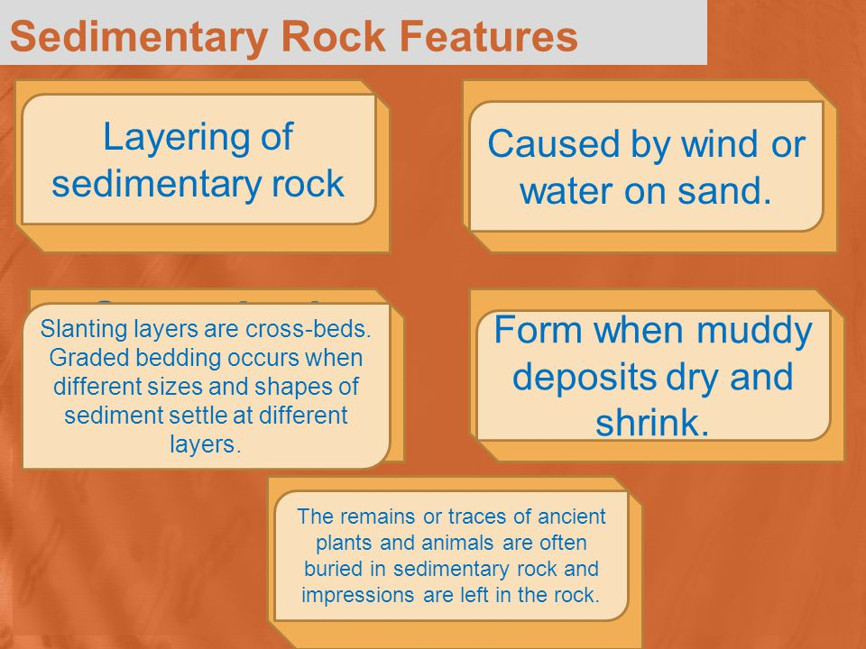 Stratification Layering of sedimentary rock Sedimentary Rock Features Cross-beds and Graded Bedding Ripple Marks Mud Cracks Fossils and Concretions Slanting layers are cross-beds.