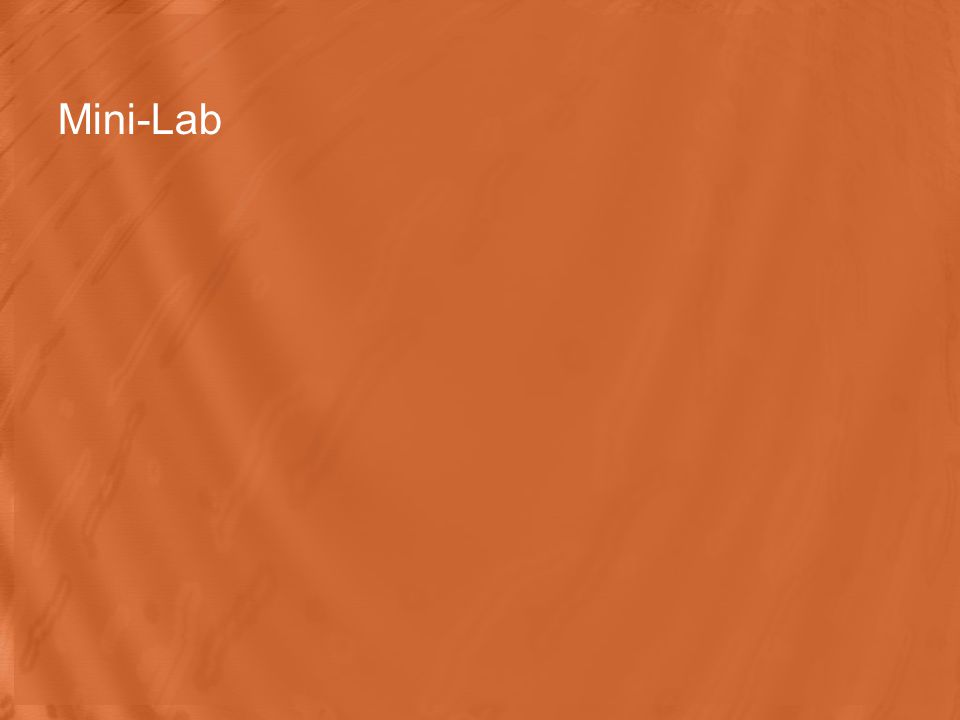 Mini-Lab