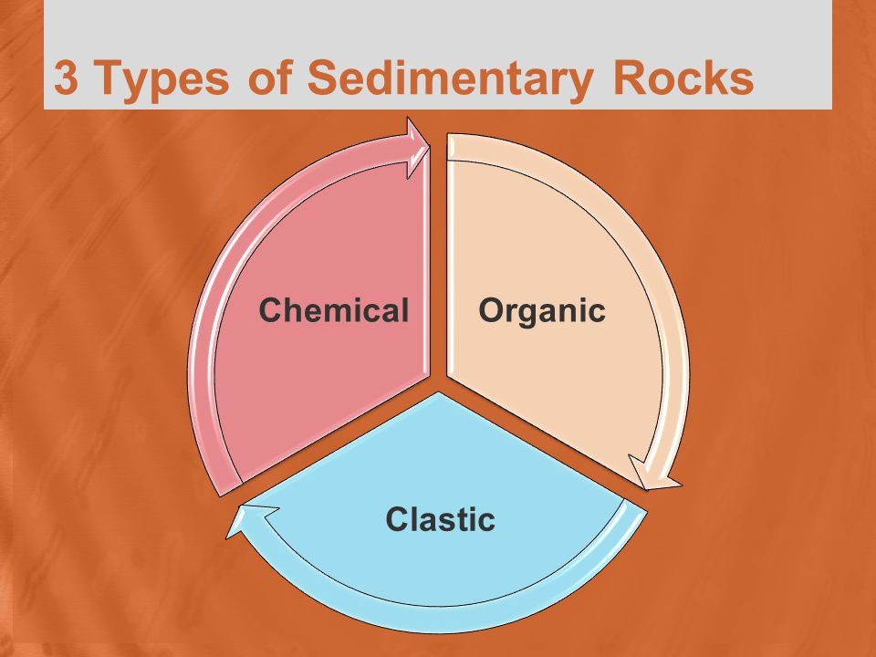 3 Types of Sedimentary Rocks Organic Clastic Chemical
