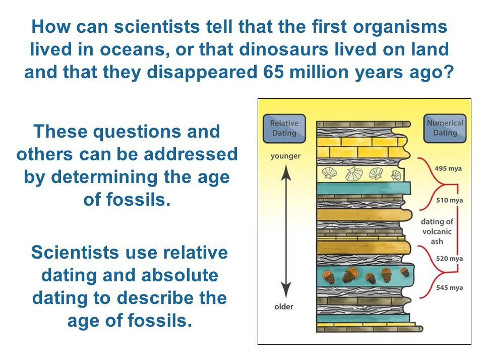 How can scientists tell that the first organisms lived in oceans, or that dinosaurs lived on land and that they disappeared 65 million years ago? Thes