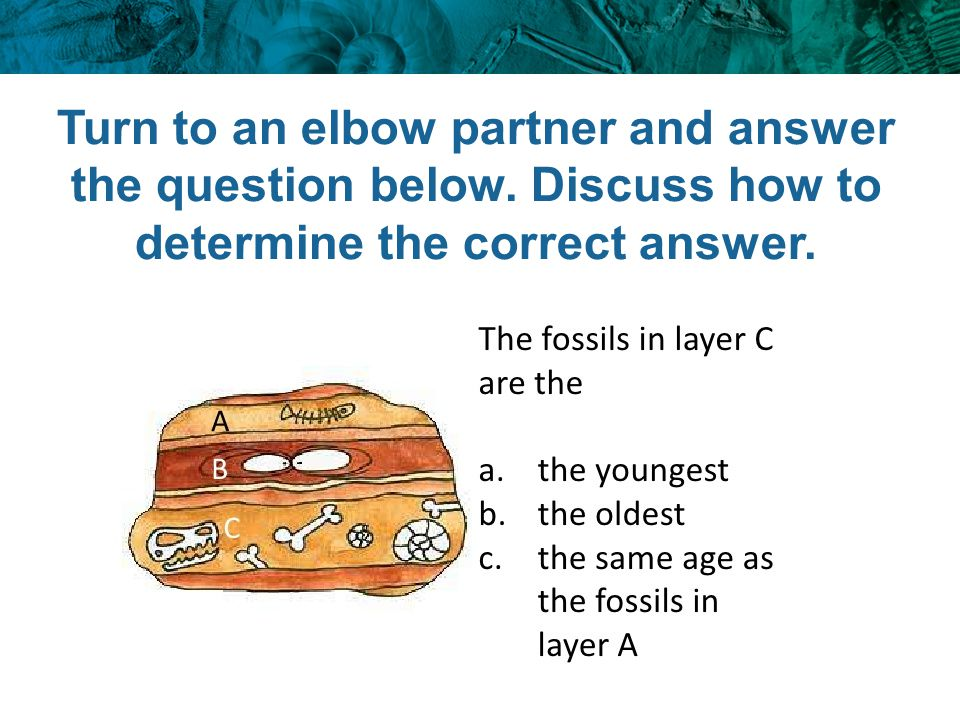 Turn to an elbow partner and answer the question below. Discuss how to determine the correct answer.
