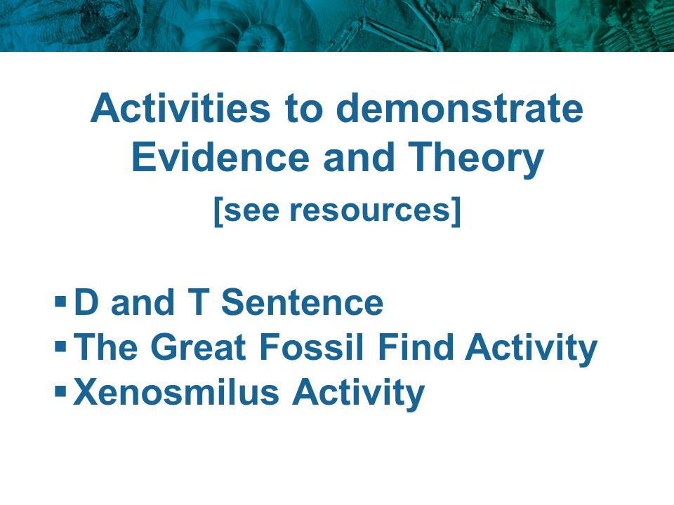 Activities to demonstrate Evidence and Theory [see resources]  D and T Sentence  The Great Fossil Find Activity  Xenosmilus Activity