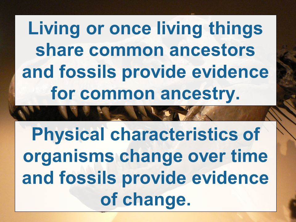Living or once living things share common ancestors and fossils provide evidence for common ancestry. Physical characteristics of organisms change ove