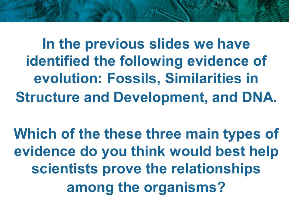 In the previous slides we have identified the following evidence of evolution: Fossils, Similarities in Structure and Development, and DNA. Which of t