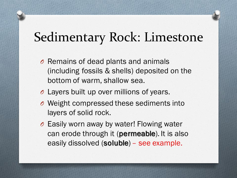 Sedimentary Rock: Limestone O Remains of dead plants and animals (including fossils & shells) deposited on the bottom of warm, shallow sea.