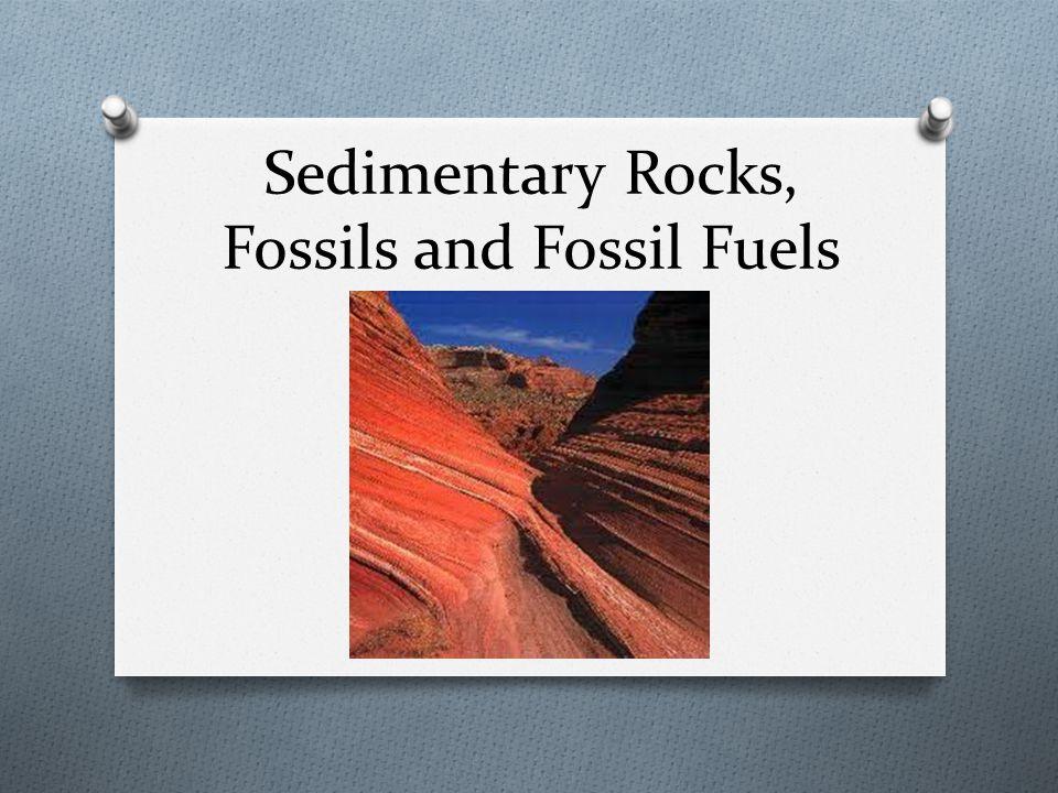 What do we know about… Igneous RocksMetamorphic Rocks