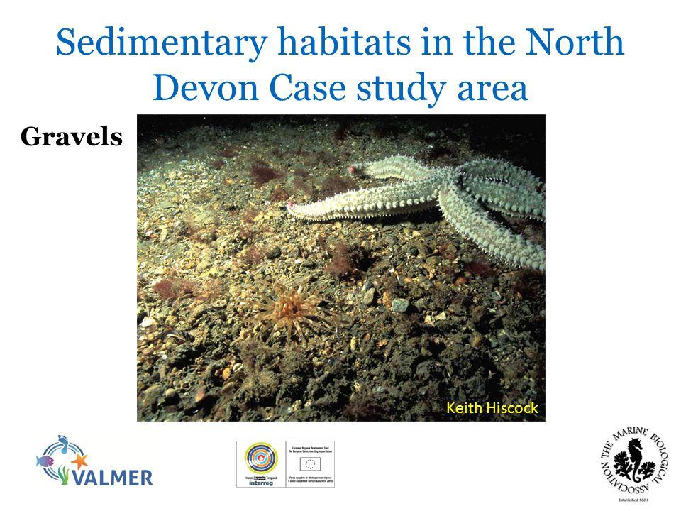 Mixed sediments Sedimentary habitats in the North Devon Case study area