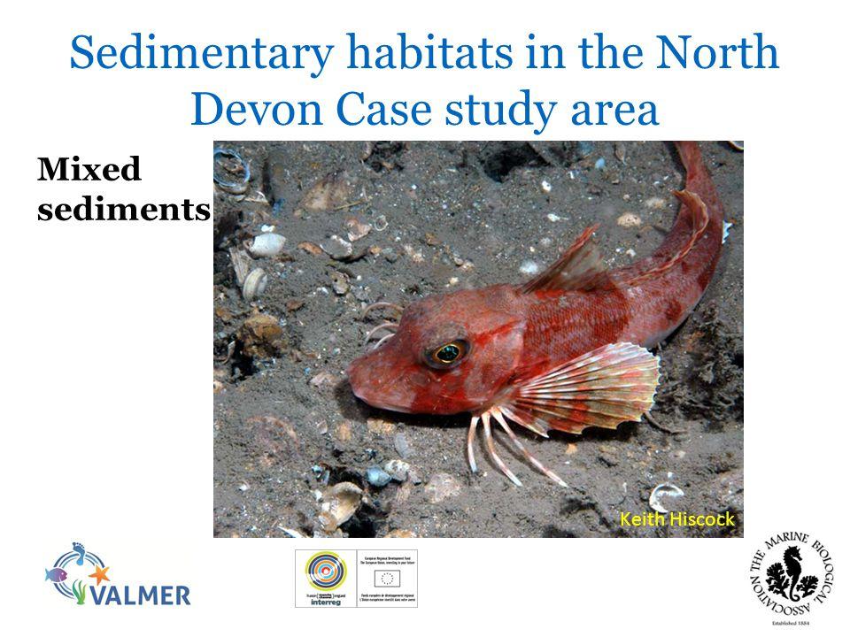 Sedimentary habitats in the North Devon Case study area