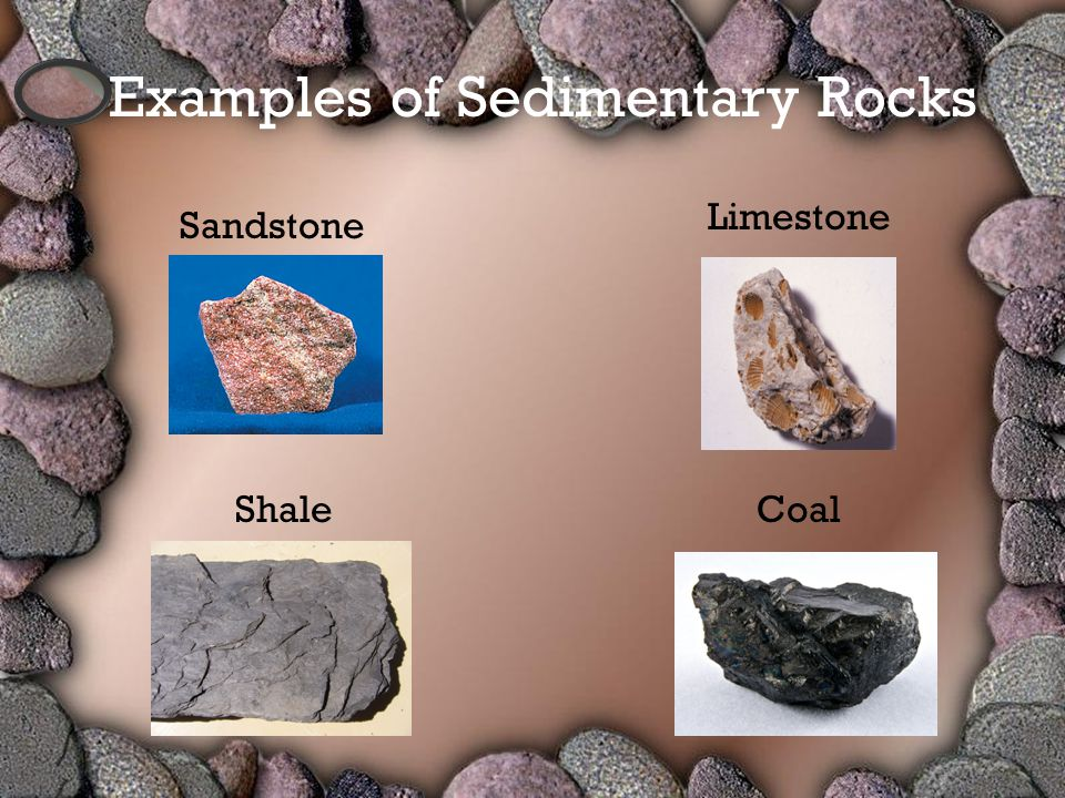Sandstone CoalShale Limestone Examples of Sedimentary Rocks