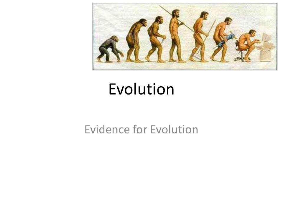 Evolution Evidence for Evolution