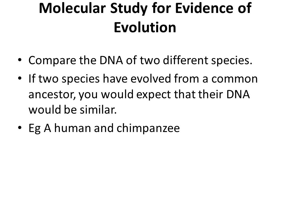 Molecular Study for Evidence of Evolution Compare the DNA of two different species. If two species have evolved from a common ancestor, you would expe