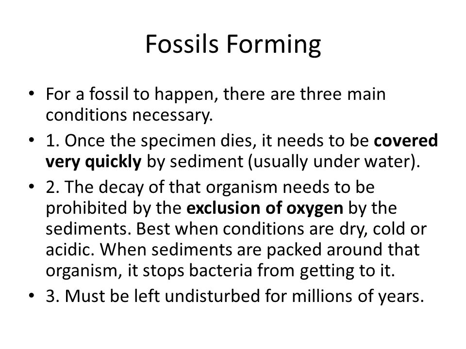 Fossils Forming For a fossil to happen, there are three main conditions necessary. 1. Once the specimen dies, it needs to be covered very quickly by s
